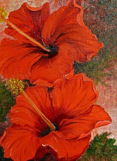 Red Hibiscus Painting by Karin Best - Red Hibiscus Fine Art Prints and Posters for Sale