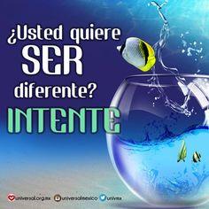La diferencia no está en lo que las circunstancias hacen contigo, sino en lo que tú haces con ellas.   Síguenos por nuestras redes sociales:  http://www.universal.org.mx  https://www.facebook.com/IglesiaUniversalMexico/ http://www.twitter.com/UnivMx http://www.instagram.com/UniversalMexico