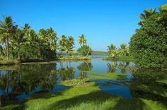 BACKWATERS OF KERALA, INDIA Kerala, dubbed God's own country, is a state in southern India featuring picturesque backwater stretches. You can rent a boat house, enjoy Ayurveda massages, and see the wildlife at Periyar National Park.