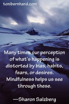 Mindfulness helps us see through bias, habits, fears, and desires...