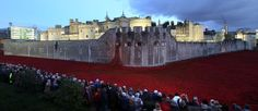 Tower Of London Poppies Spectacularly Displayed At Dusk As Boris Johnson Fights For Them To Stay