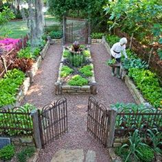 stone raised beds, corner tree, fencing