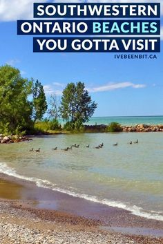 8 FREE Southwestern Ontario Beaches You MUST Visit » I've Been Bit :: A Travel Blog Alberta Canada, Canada Ontario, Free Beach, Beach Fun, Beaches In Ontario, Ottawa, Places To Travel, Places To See, Ontario Travel