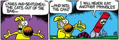 A daily comic strip by Mike Peters, Mother Goose And Grimm / Attila & pringles can 4