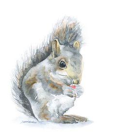 Squirrel Original Watercolor Painting 8x10 Nursery Fine Art via Etsy