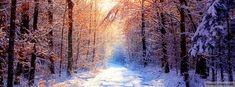 Winter Facebook Cover Tree Winter Wallpaper, Forest Wallpaper, Sunset Wallpaper, Fall Wallpaper, Landscape Wallpaper, Winter Scenery, Winter Trees, Winter Snow, Snow Trees