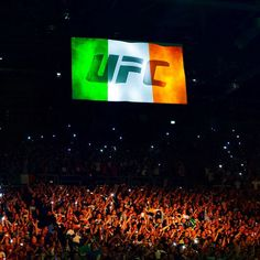 16fd5b8bbe3 3arena in Dublin for UFC Fight Night Ufc 189