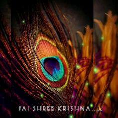 Krishna Gif, Radha Krishna Songs, Krishna Flute, Krishna Leela, Radha Krishna Love Quotes, Krishna Statue, Baby Krishna, Jai Shree Krishna, Radha Krishna Images