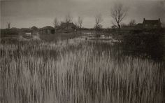 P.H. Emerson (American, active in England,1856-1936): A Rushy Shore.  Platinum print, 7.5 x 11.25 inches/19 x 28.6 cm, 1885/1886
