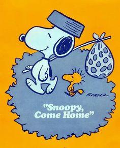 Snoopy n Woodstock - Travelin