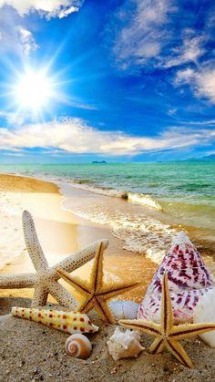 summer beach sun starfish waves mobile wallpaper – My CMS Strand Wallpaper, Beach Wallpaper, Summer Wallpaper, Of Wallpaper, Mobile Wallpaper, Tropical Wallpaper, Wallpapers Android, Ocean Beach, Summer Beach