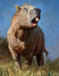 Art illustration - Prehistoric Mammals - Josephoartigasia: is an extinct genus of rodent histricomorfos Dinomyidae family. Were giant rodents that lived in the early Pliocene late, makes four to two million years in what is now Uruguay.