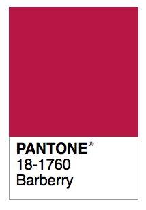 51 best color names pantone images on pinterest color schemes r