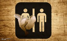 Restroom sign that makes people capture and share your place Toilet Signage, Bathroom Signage, Restaurant Bathroom, Funny Toilet Signs, Funny Signs, Wc Public, Wc Sign, Office Signage, Wayfinding Signs
