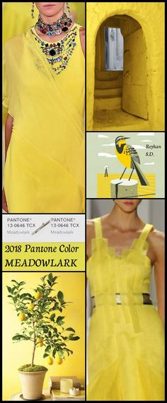 ''2018 Pantone Color - Meadowlark '' by Reyhan S.D.