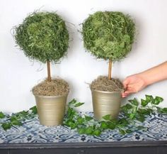 Read our clever DIY home décor guide! Discover ten creative ways common dollar store finds can make you the perfect faux high-end pieces for any space. Diy Home Decor Projects, Diy Home Crafts, Diy Garden Decor, Decor Diy, Home Decoration, Room Decor, Dollar Tree Decor, Dollar Tree Crafts, Topiary Trees