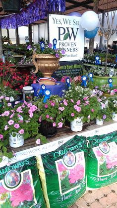 Proven Winners at Calloway's Nursery in Flower Mound Flower Mound, Proven Winners, This Is Us, Nursery, Gardening, Table Decorations, Flowers, Nature, Plants