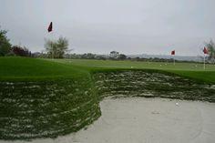 Stacked sod bunker in Del Mar CA Golf Green, Bunker, Golf Courses, Celebrity, Celebs, Famous People, Asylum