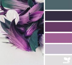 { flora hues } color inspiration from design-seeds Colour Pallette, Colour Schemes, Color Combos, Interior Design Color Schemes, Purple Color Palettes, Purple Palette, Purple Bedrooms, Bedroom Colors, Bedroom Ideas
