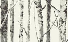 carta da parati acrilica: moderne carte da parati con colla a muro - AERREe Carta da parati Pavimenti Tappeti Pitture Cornici