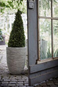 Capi Rib Ivory flowerpot by Capi Nature #ribstructure #naturaldesign #garden #tuin #outdoor #capieurope #summer #spring #autumn #planter #bloempot #vase #plantenbak #landelijk #design #exterior #exteriordesign #rustic #pot