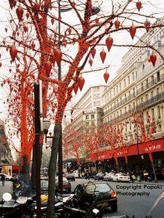 holiday decorating in paris   Popoki Travel Photography - Paris, France Color Photographs