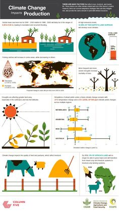 One Fifth: The amount of all pastures and ranges turned to desert by overgrazing for meat. Twenty: The number of vegetarians who could live on the same amount of land as one meat-eater. 220 Billion: The number of gallons of hormone-, antibi Earth Science, Life Science, Science Fair, Global Warming Climate Change, Scary Facts, The Future Of Us, Food Security, Environmental Education, Sustainable Development