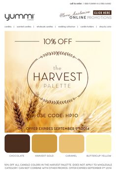 10% OFF The Harvest Palette! Use Promo Code HP10 At Checkout
