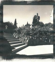 King Petar Krešimir IV - Šibenik - Lidija Ivanek SiLa