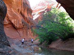 Red Cliffs Recreation Area Near Leeds Utah