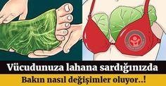 Vücudunuza lahana yapraklarını neden sarmalısınız? Bu yazıyı okuduktan sonra göğsünüze ve bacaklarınıza lahana yaprakları sarmaya başlayacaksınız.. #lahana #sağlık #sağlıkhaberleri #health #news