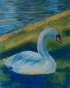 Check out this item in my Etsy shop https://www.etsy.com/listing/484733821/original-pastel-art-swan