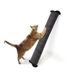 Lean-it Scratching Post - Click here http://www.coolcattreehouse.com/shop/lean-it-scratching-post/ for more info