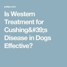 Is Western Treatment for Cushing's Disease in Dogs Effective?