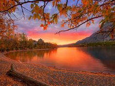 Autumn red - lake, sunrise, trees, river, colors, fall, beach, branches, leaves, water, sundown, sunset, mountain, red, nature