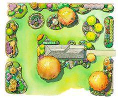 Plant-in-Stages Landscape Plan