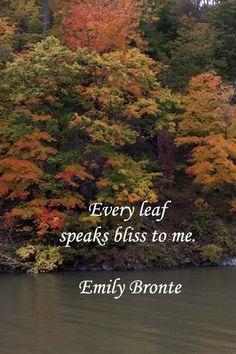 quotes about autumn colors - Google zoeken