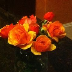Yellow/Red roses
