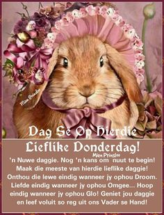 Grandma Quotes, Goeie More, Teddy Bear, Van, Lekker Dag, Animals, Afrikaanse Quotes, Positive Thoughts, Mornings