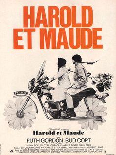 harold & maude, a classic