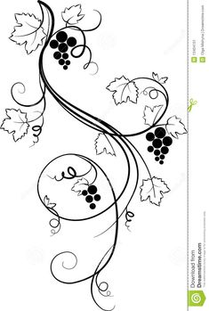 grape vines drawing - Google Search