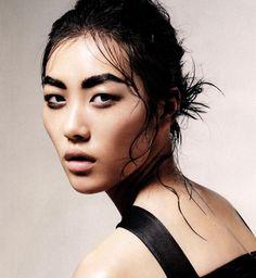 a Liu Wen