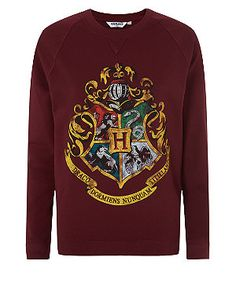 Dark Red (Red) Teens Burgundy Harry Potter Hogwarts Sweater | 308309361 | New Look