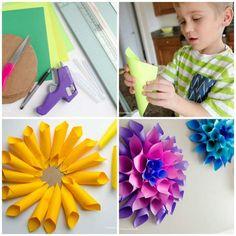 Dahlias multicolores