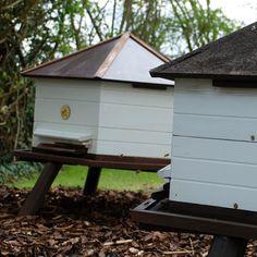 really cute beekeeping hives