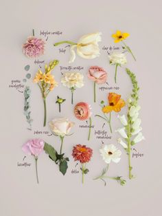 flowers/flores Bouquet Breakdown by Blushing Rose Floral Floral Wedding, Wedding Bouquets, Wedding Flowers, Bouquet Of Flowers, Ranunculus Bouquet, Cut Flowers, Wedding Dresses, Cut Flower Garden, Flower Farm