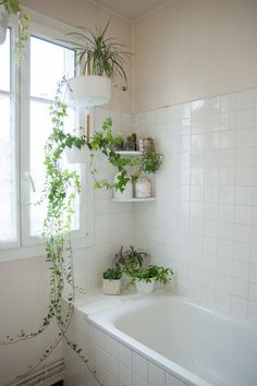 dreaming bathroom Paris greenery plants lover