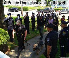 police dog's last visit to the vet