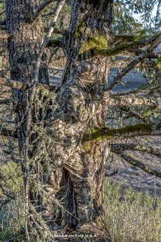 Gulch designs and manufactures ultralight hunting apparel using the world's best technical textiles and manufacturing exclusively in the USA. Best Camouflage, Hunting Camouflage, Military Camouflage, Armadura Sci Fi, Force Pictures, Indian Army Wallpapers, Rifles, Ghillie Suit, Airsoft Sniper