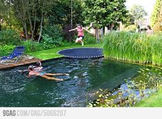 Trampoline pool, I want this!!!!!!!!